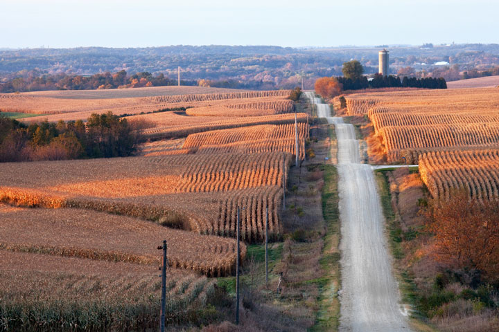 gravel road through Iowa corn fields at harvest time